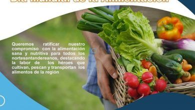 Photo of Campaña Dia mundial de la Alimentación